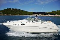 Sea Ray 240 Sundancer photos